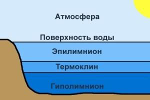цесарский термоклин