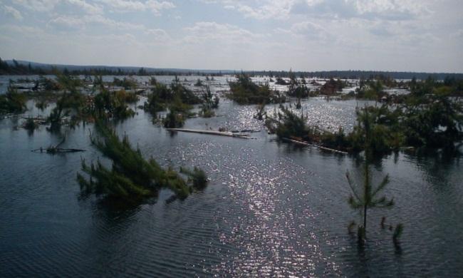 места ловли щуки на богучанском водохранилище