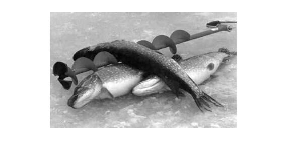 Кружки, жерлицы, поставушки - рыбалка на щуку