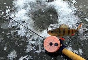 удильник для зимней рыбалки