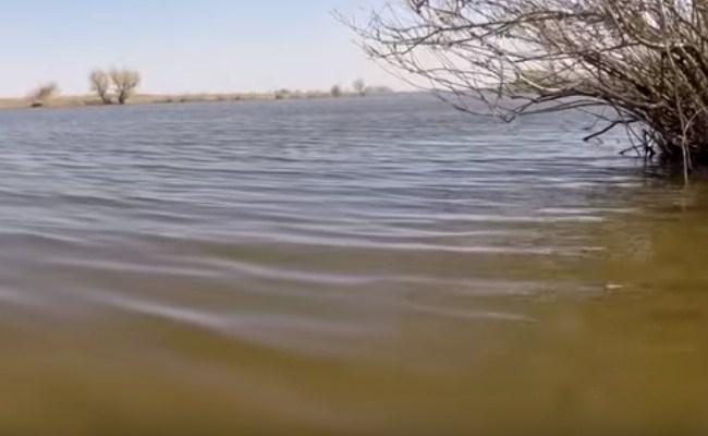 прозрачность весенней воды