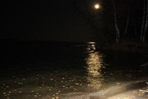 как собраться на ночную рыбалку летом