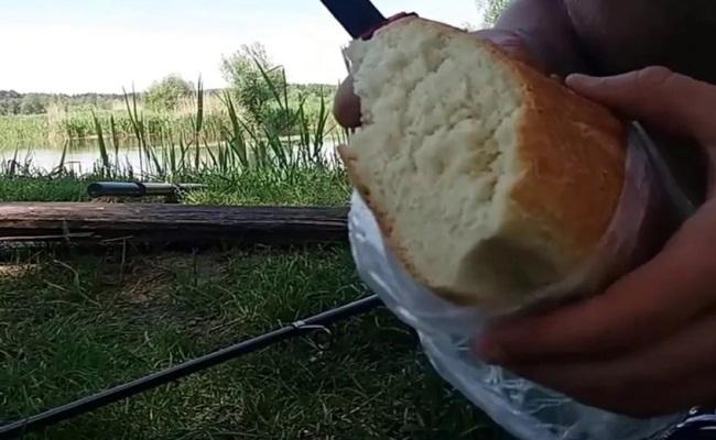 ловим рыбу на хлеб