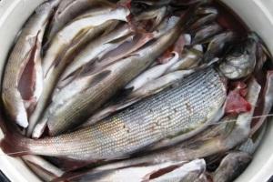 рыба с душком по ангарски
