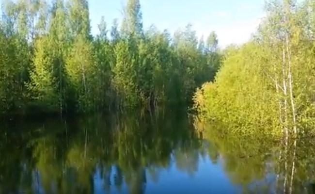 затопленные заливы водохранилища осенью