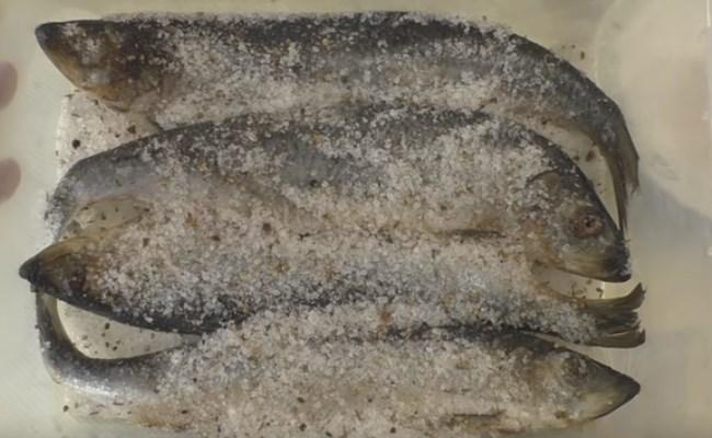 селедка в смеси соли со специями