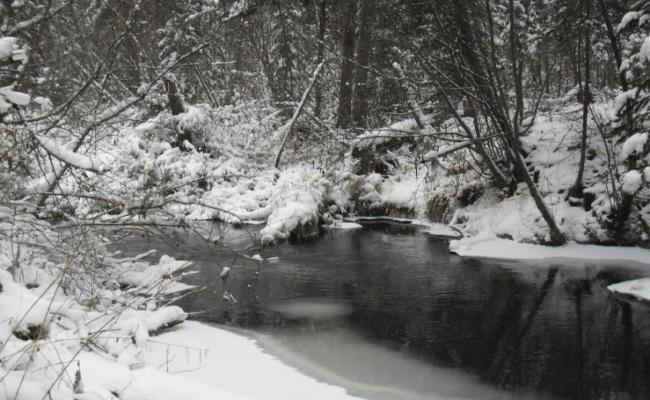 фото притока ангары
