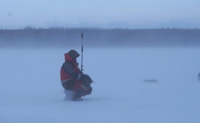 рыболов нашел налима зимой