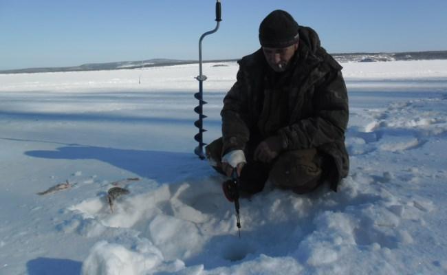 ловля леща на чертик зимой