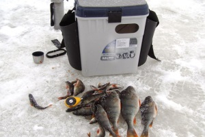 скарб рыболова зимой