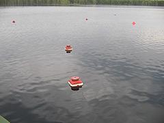 расставленные по озеру кружки