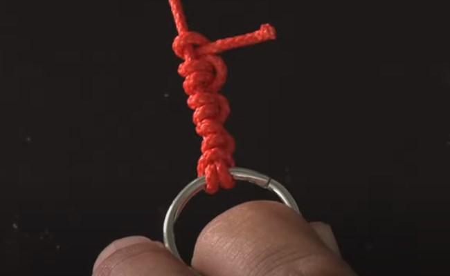 Hornworm Knot