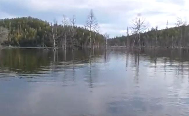корчи водохранилища, как настроить фрикцион под условия ловли