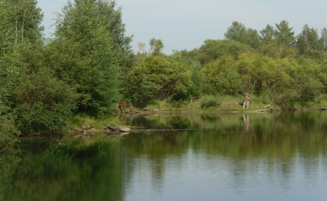 рыбалка на карьере