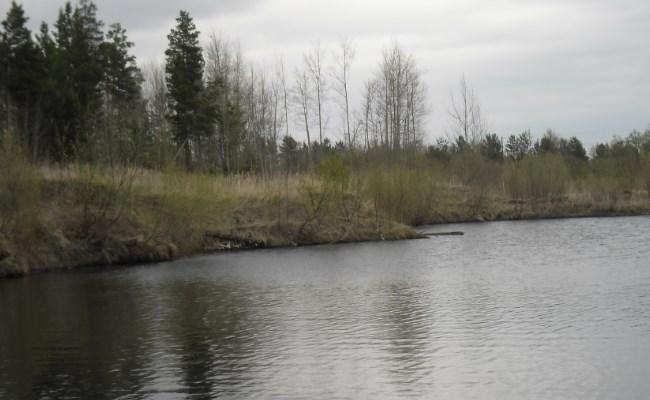 холодная и чистая вода осенью